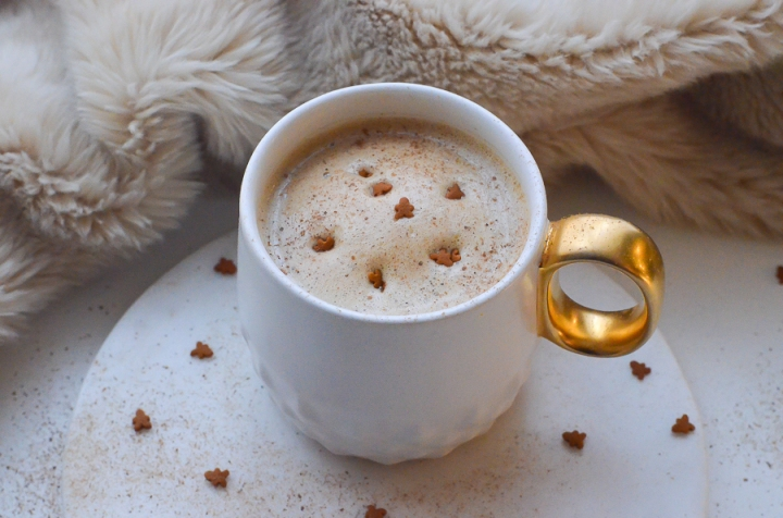 gingerbread_latte_cafe_pain_epice_recette_facile_itmademydayblog_0932