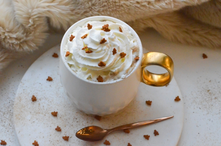 gingerbread_latte_cafe_pain_epice_recette_facile_itmademydayblog_0946