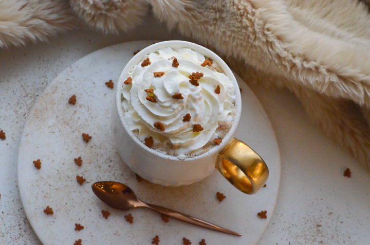 gingerbread_latte_cafe_pain_epice_recette_facile_itmademydayblog_0947
