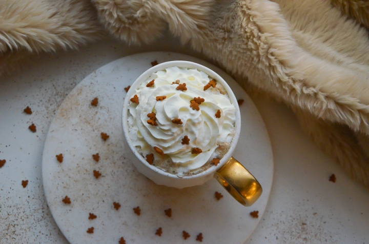 gingerbread_latte_cafe_pain_epice_recette_facile_itmademydayblog_0952