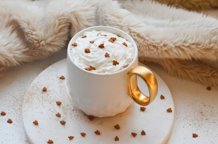 gingerbread_latte_cafe_pain_epice_recette_facile_itmademydayblog_0994