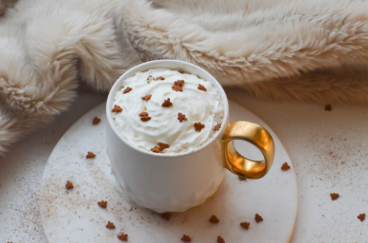 gingerbread_latte_cafe_pain_epice_recette_facile_itmademydayblog_0997